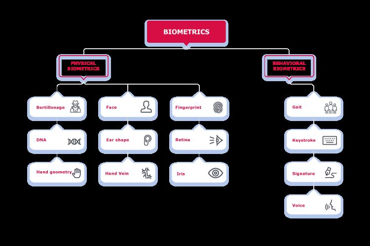 https://recfaces.com/wp-content/uploads/2020/11/types-of-biometrics-1.png